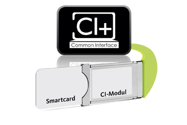 1 x Common Interface (CI+)